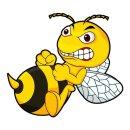 2er Set Aufkleber Böse Biene I 15 x 9 cm I außenklebend